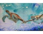 Turtle-Mates.jpg